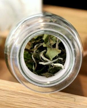 Brewing White Tea
