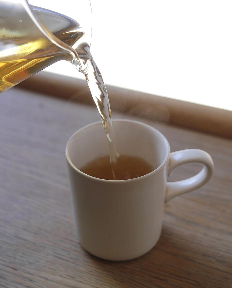 Lemon-Verbena-Brewer's-Pick-.jpg