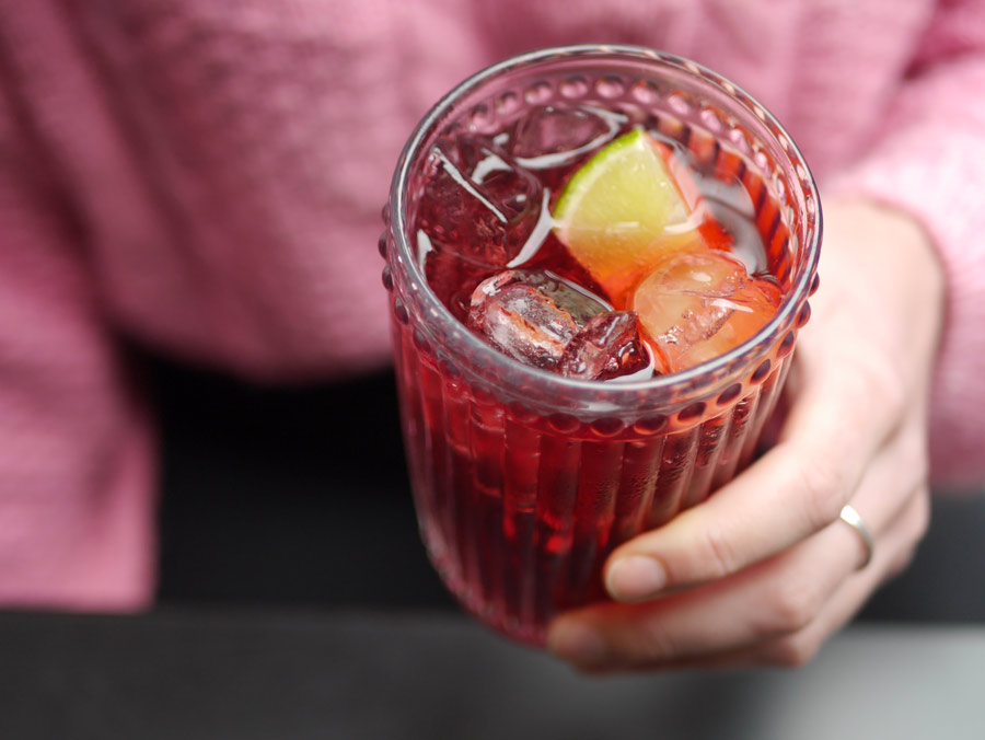 Hibiscus-Iced-to-use-web.jpg