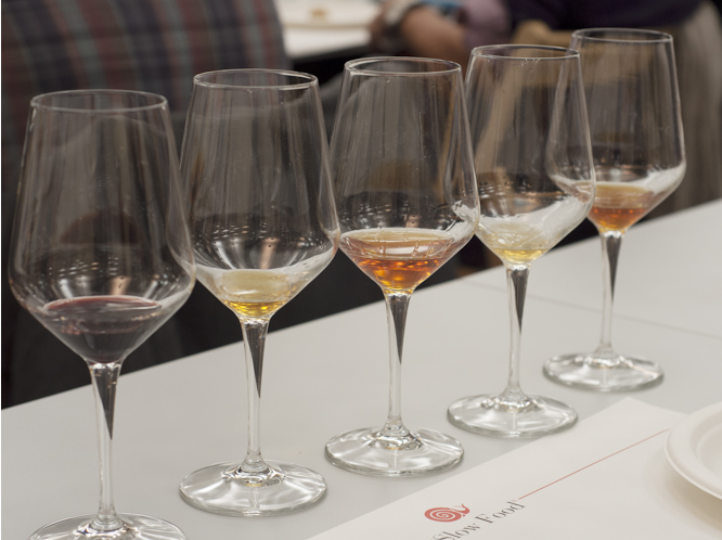 a horizontal tasting from one of hundreds of vineyards at Salone del Gusto 2012