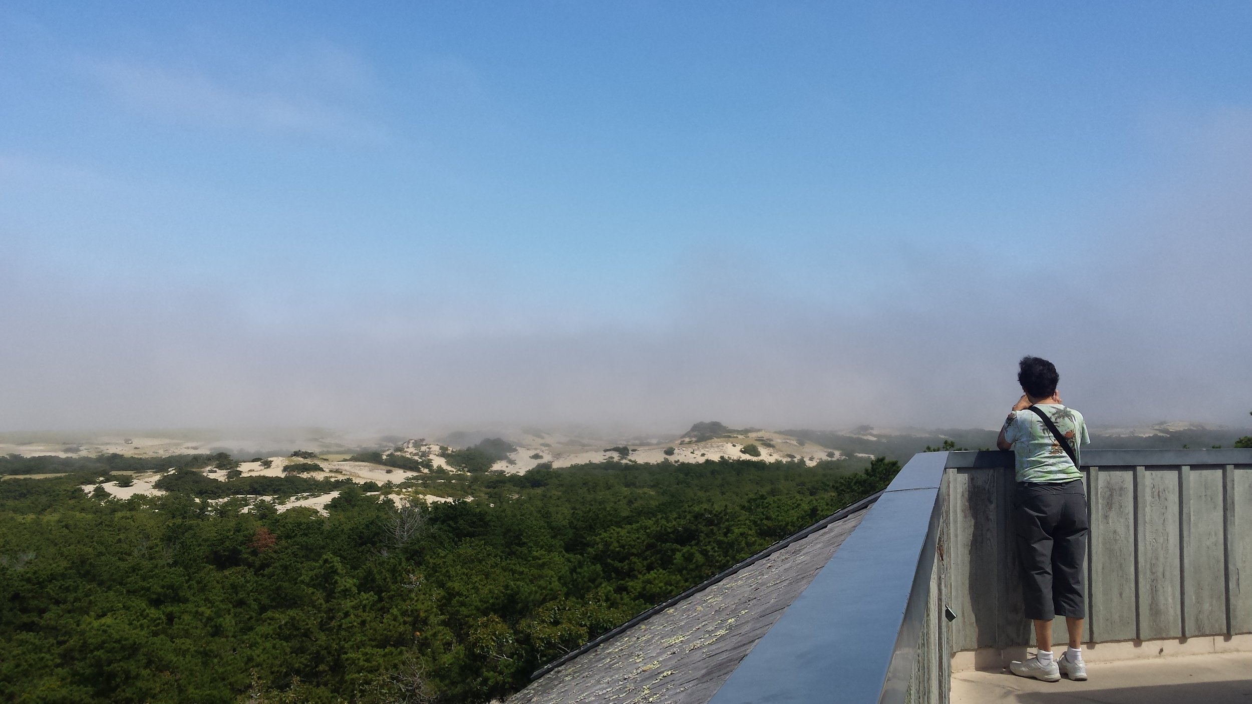 Fog Moving Over the Dunes
