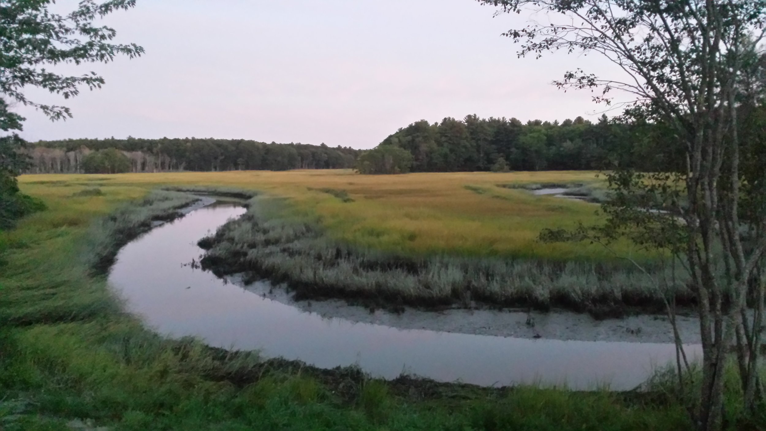 A view of the salt marsh near Scarborough, Maine