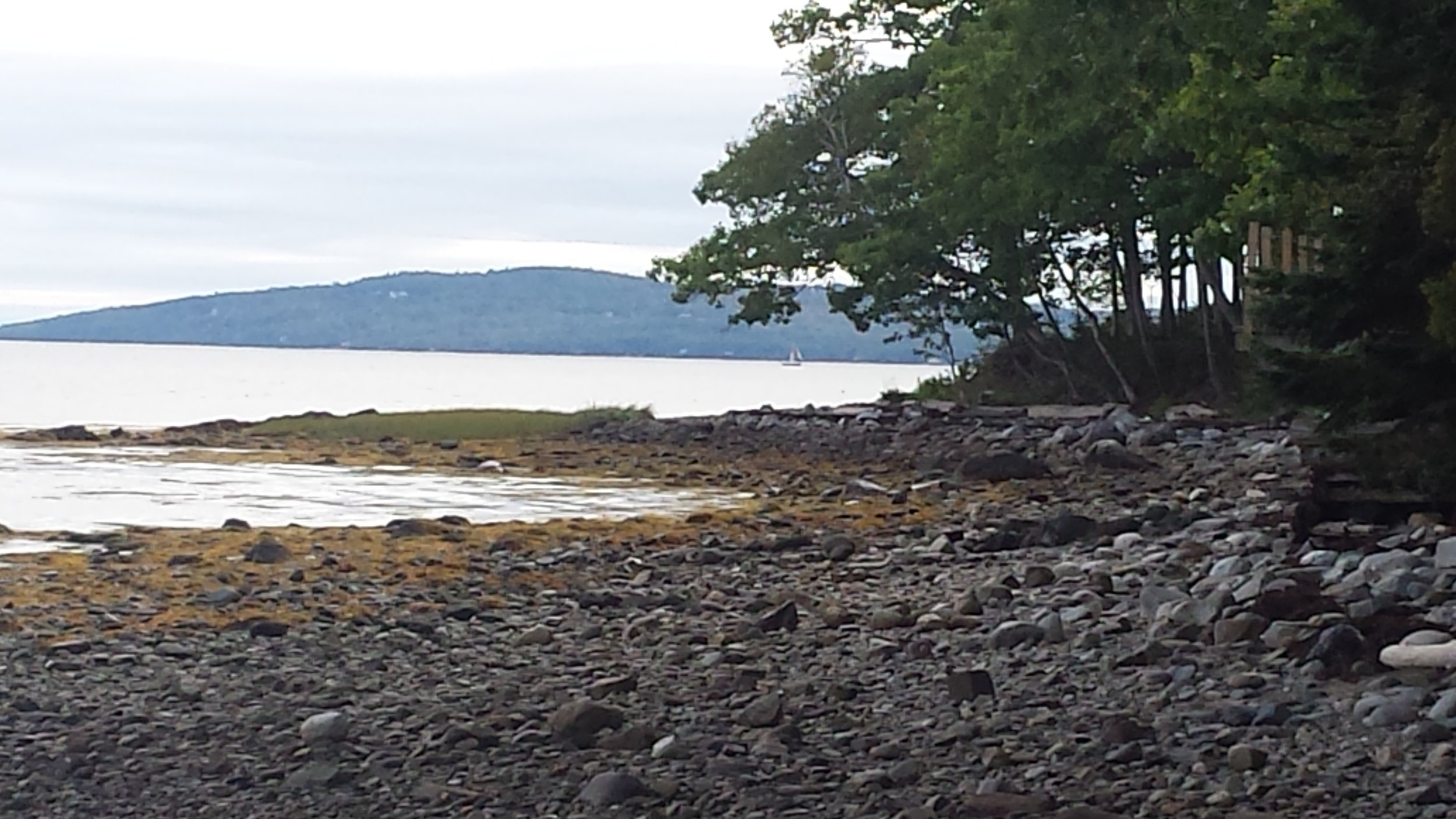 Rocky beach in front of our campsite