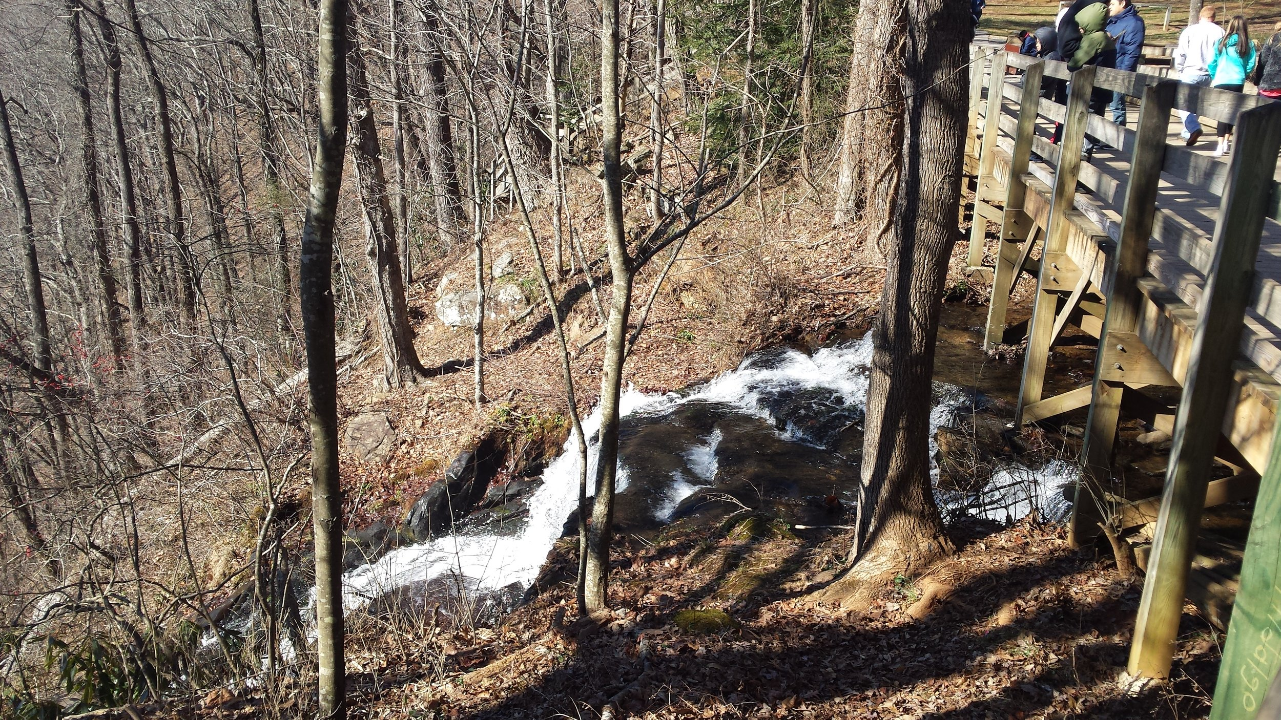 Top of Amicalola Falls across from campground.