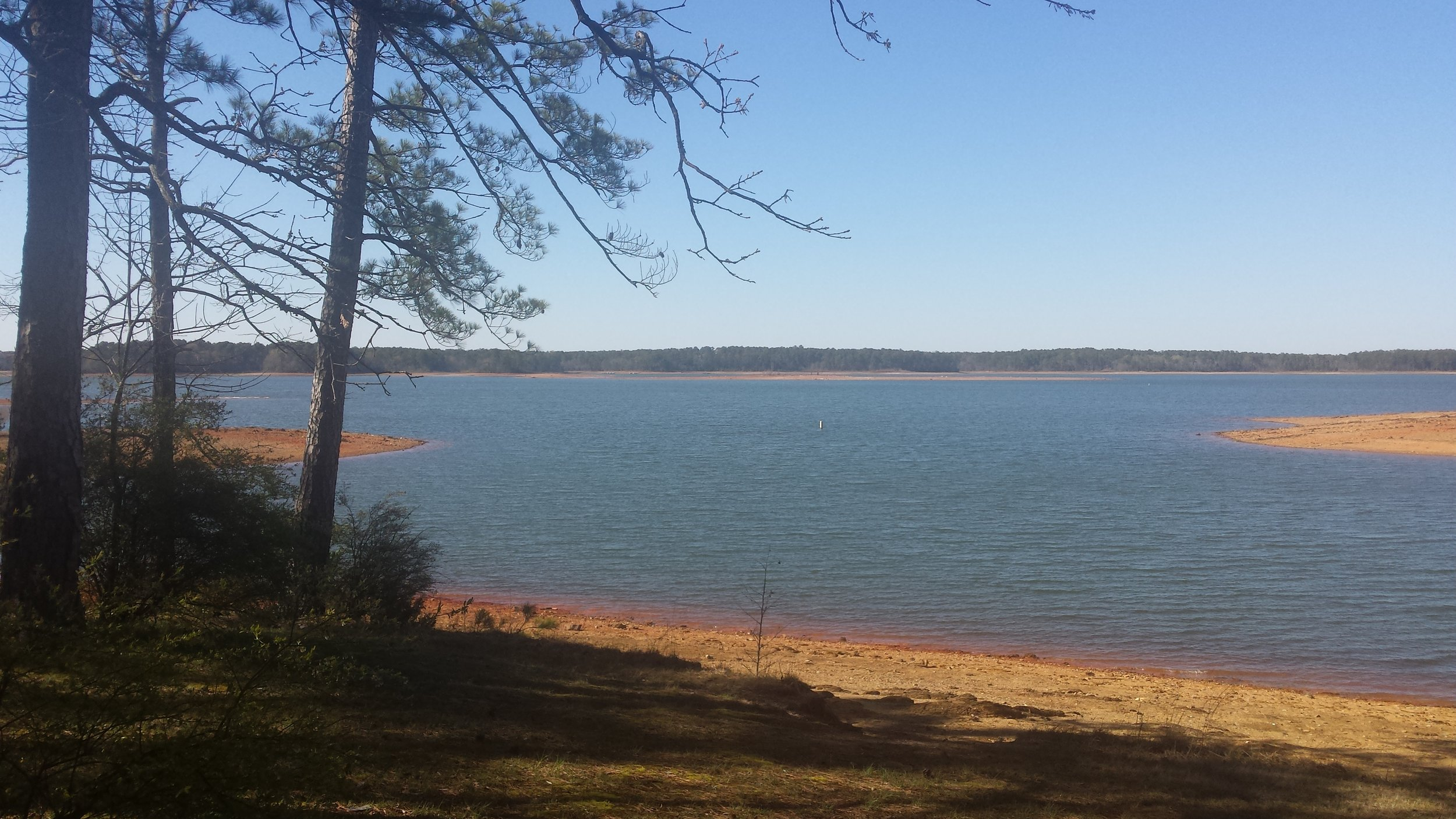 Lots of dry shoreline to walk during the winter months at Clarks Hill Lake, Georgia