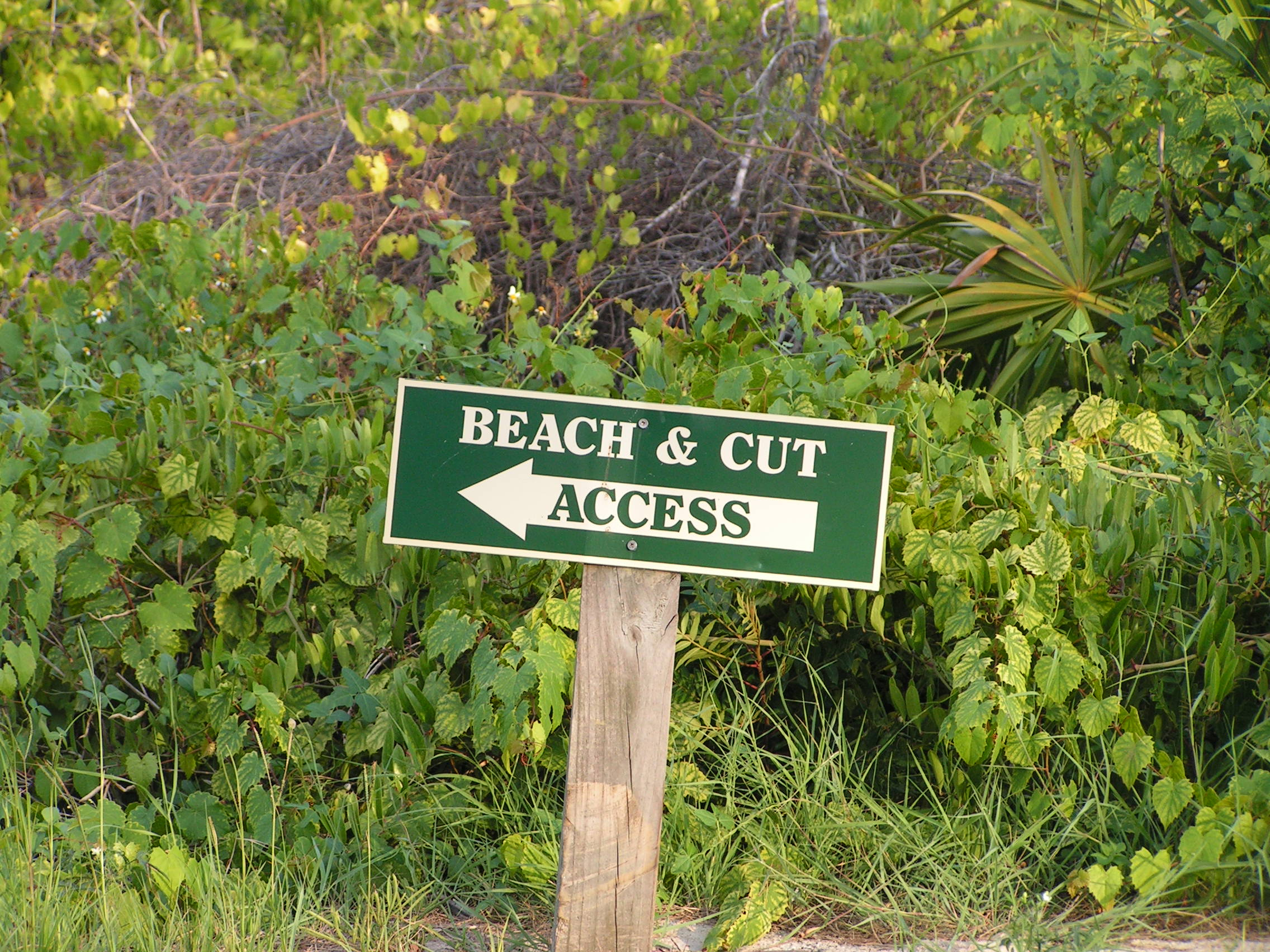 beach-cut-sign.jpg