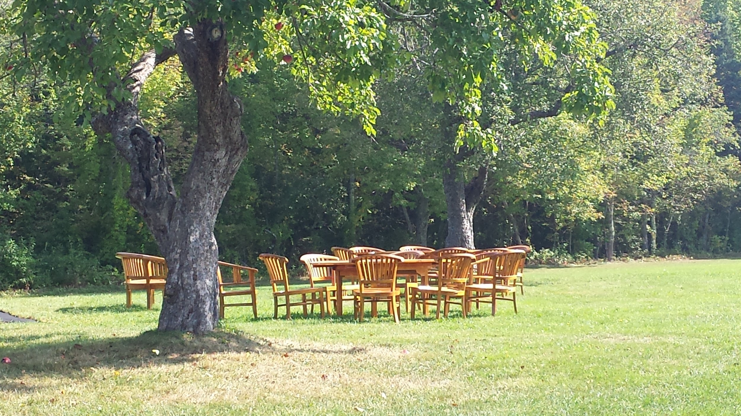 chairs-on-lawn.jpg