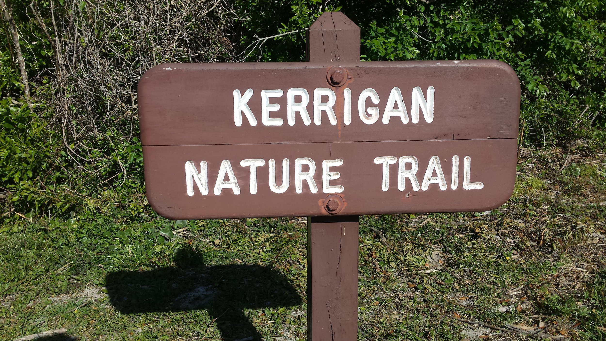 All three trials are easy hiking. We enjoyed the observation platform on the Kerrigan Trail.