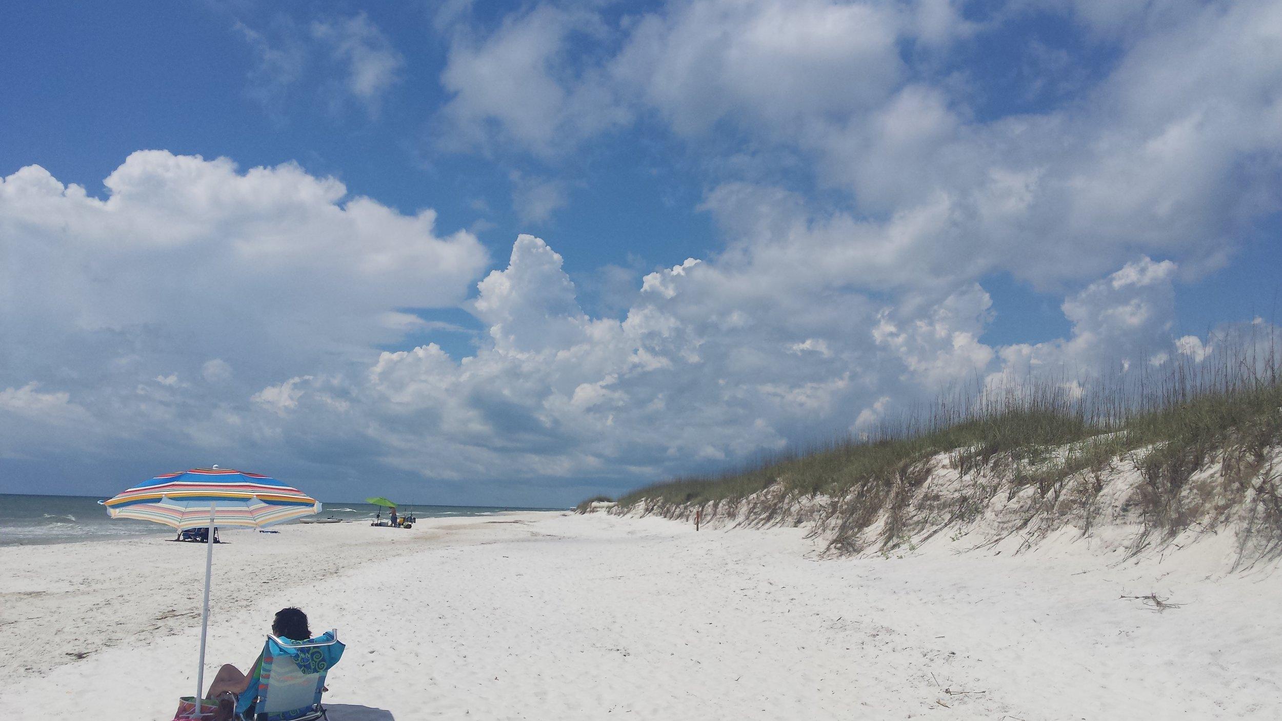 Cape San Blas state park beach and dunes.