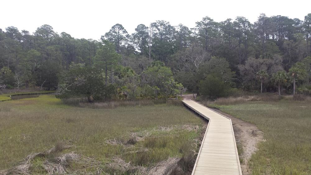 Boardwalk to observation tower