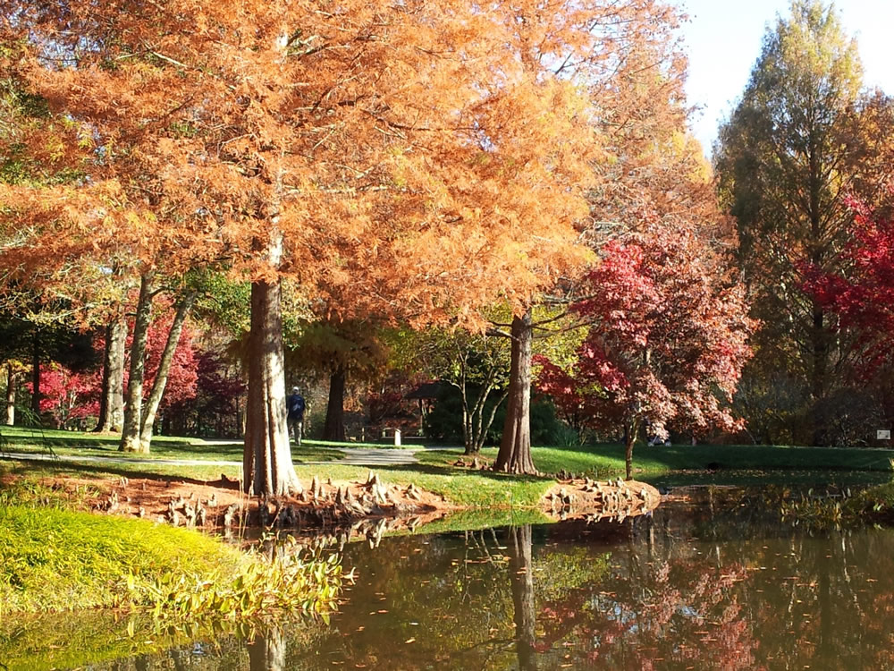 Gibbs Gardens walking paths around the ponds