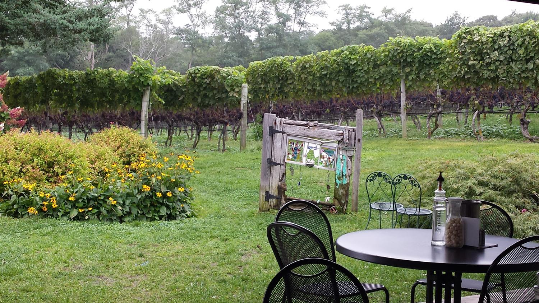 truro-vineyard.jpg