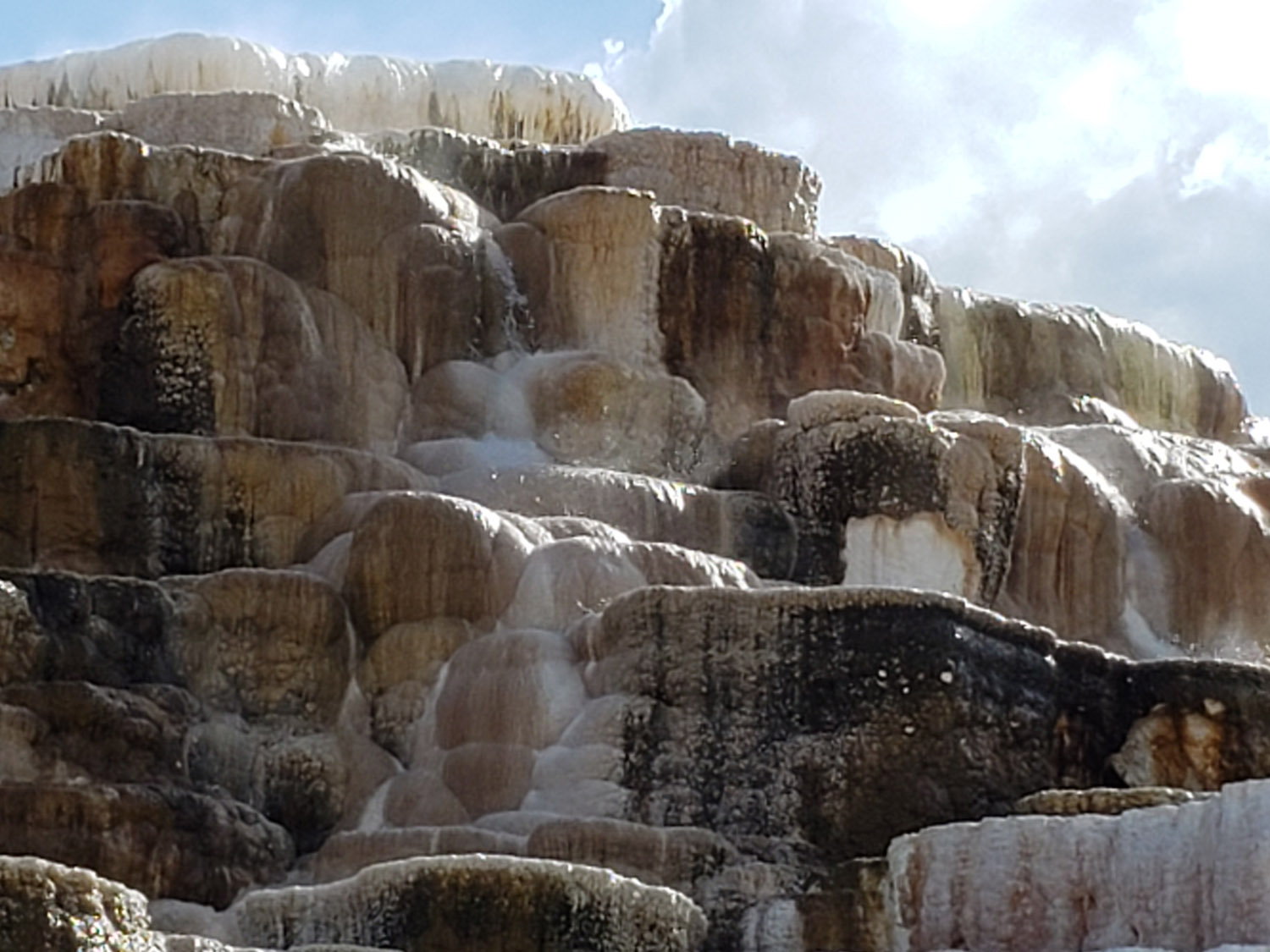 The dramatic terraces at Mammoth Springs