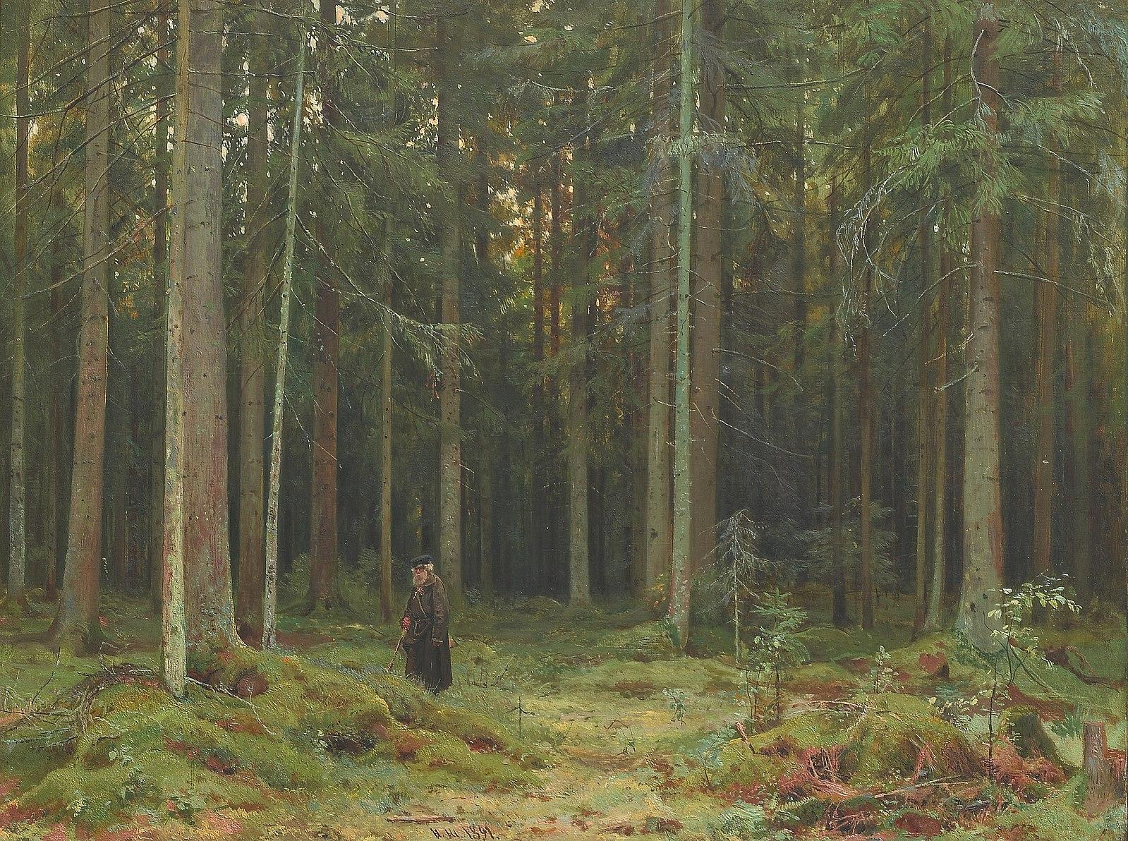 Ivan Shishkin , Countess Mordvinova' s  Wood  (1893) Oil on canvas. 84 х 110.5cm. Tretyakov Gallery, Moscow.  https://www.tretyakovgallery.ru/en/collection/v-lesu-grafini-mordvinovoy-petergof/