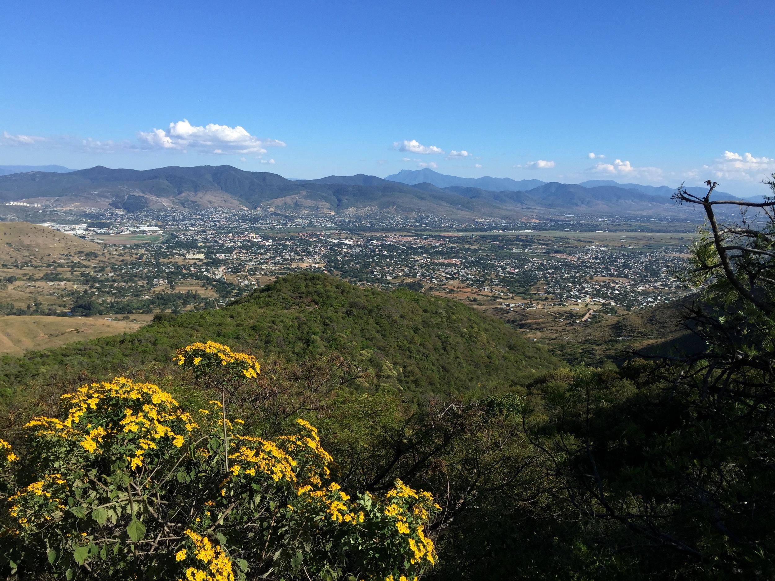 Panoramic 3.jpg