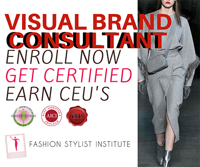 Visual Brand Certification Course.png