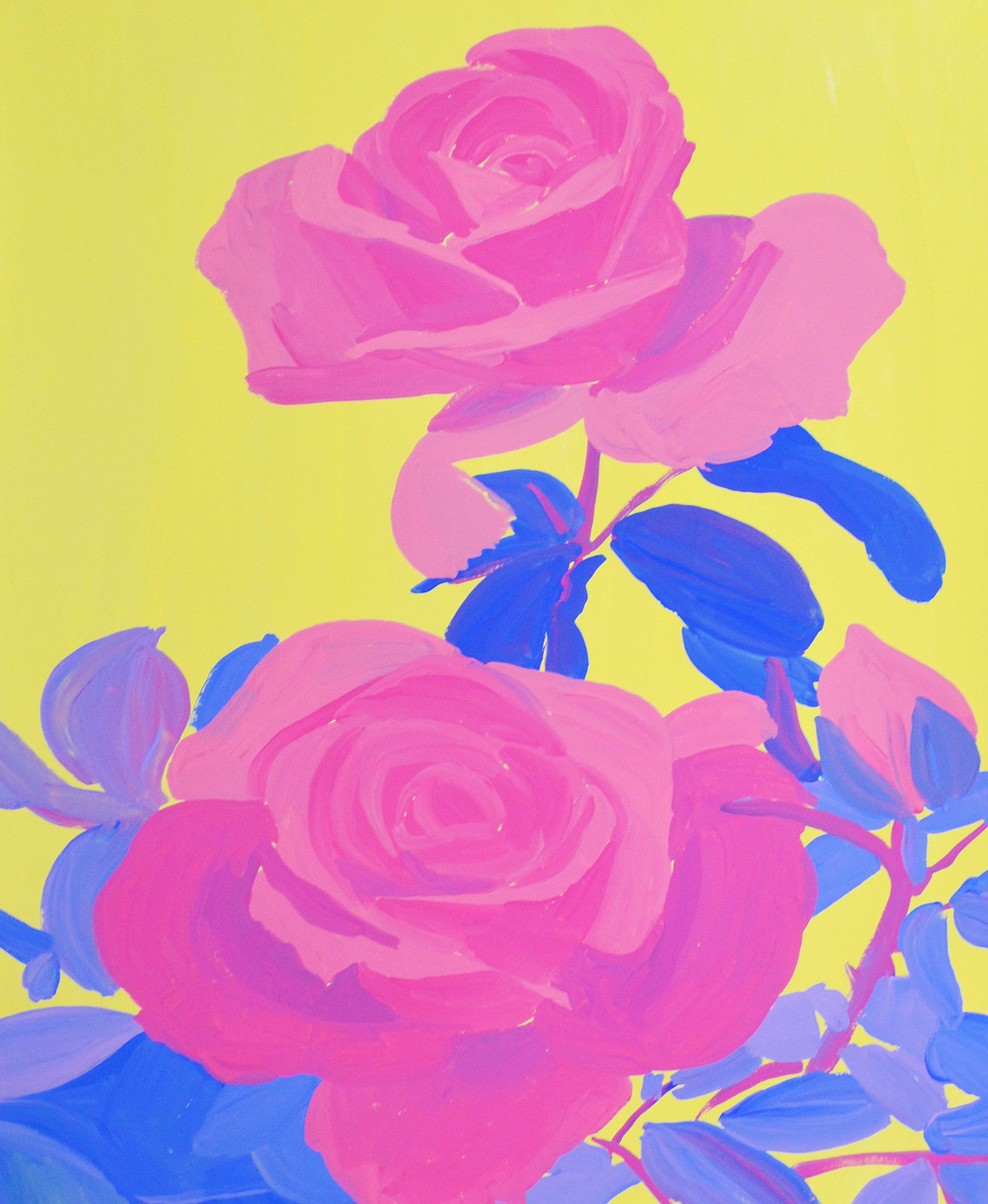 Berkeley Rose Garden.jpg