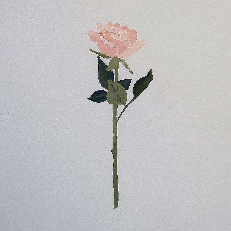 pink+rose.jpg
