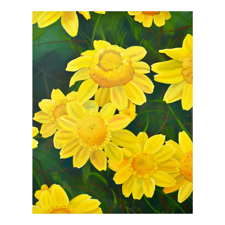 goldblooms .jpg