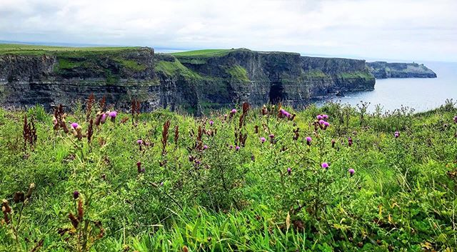 The dramatic Cliffs of Moher, one of the most visited sites on the Wild Atlantic Way in Ireland 🇮🇪 #ireland #forbusinessorpleasure