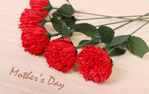 mothers-day carnations.jpg