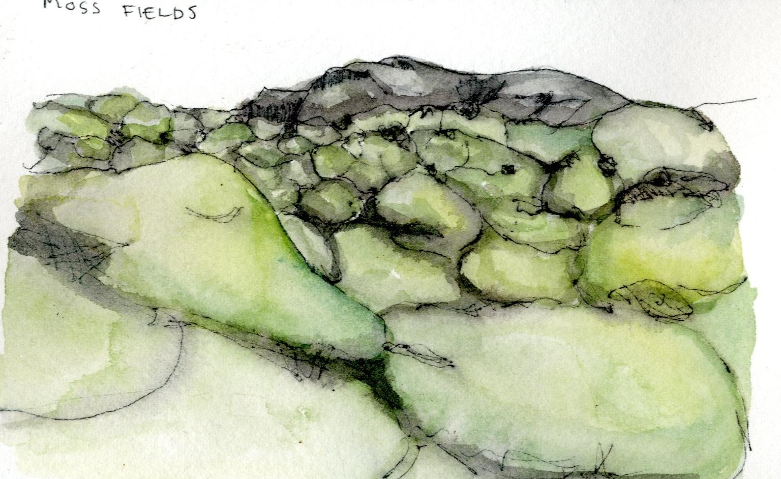 Moss Fields.jpg