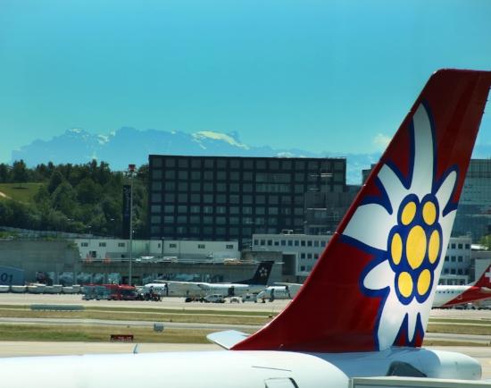 Welcome to Zurich!  © Tony DiBona