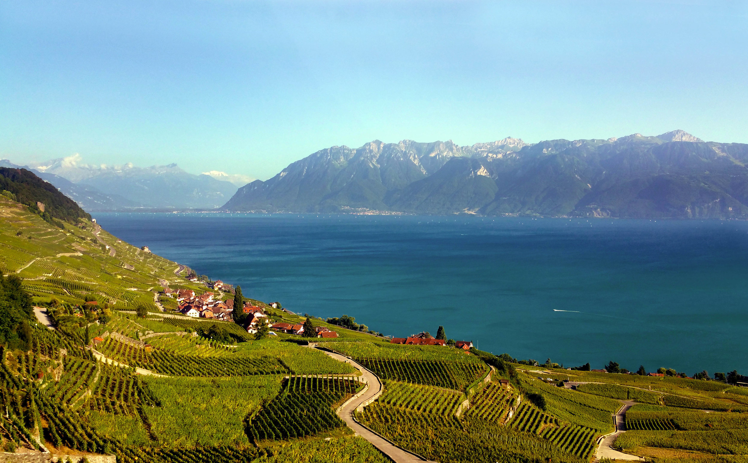 View over the Lavaux vineyards, a UNESCO heritage site, onto Lake Geneva                                                                                                                                                © Joanne DiBona