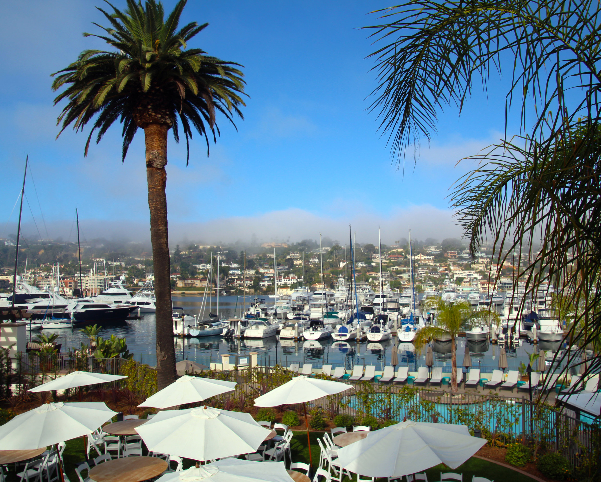 View on the marina from our suite's balcony. © Joanne DiBona Photography