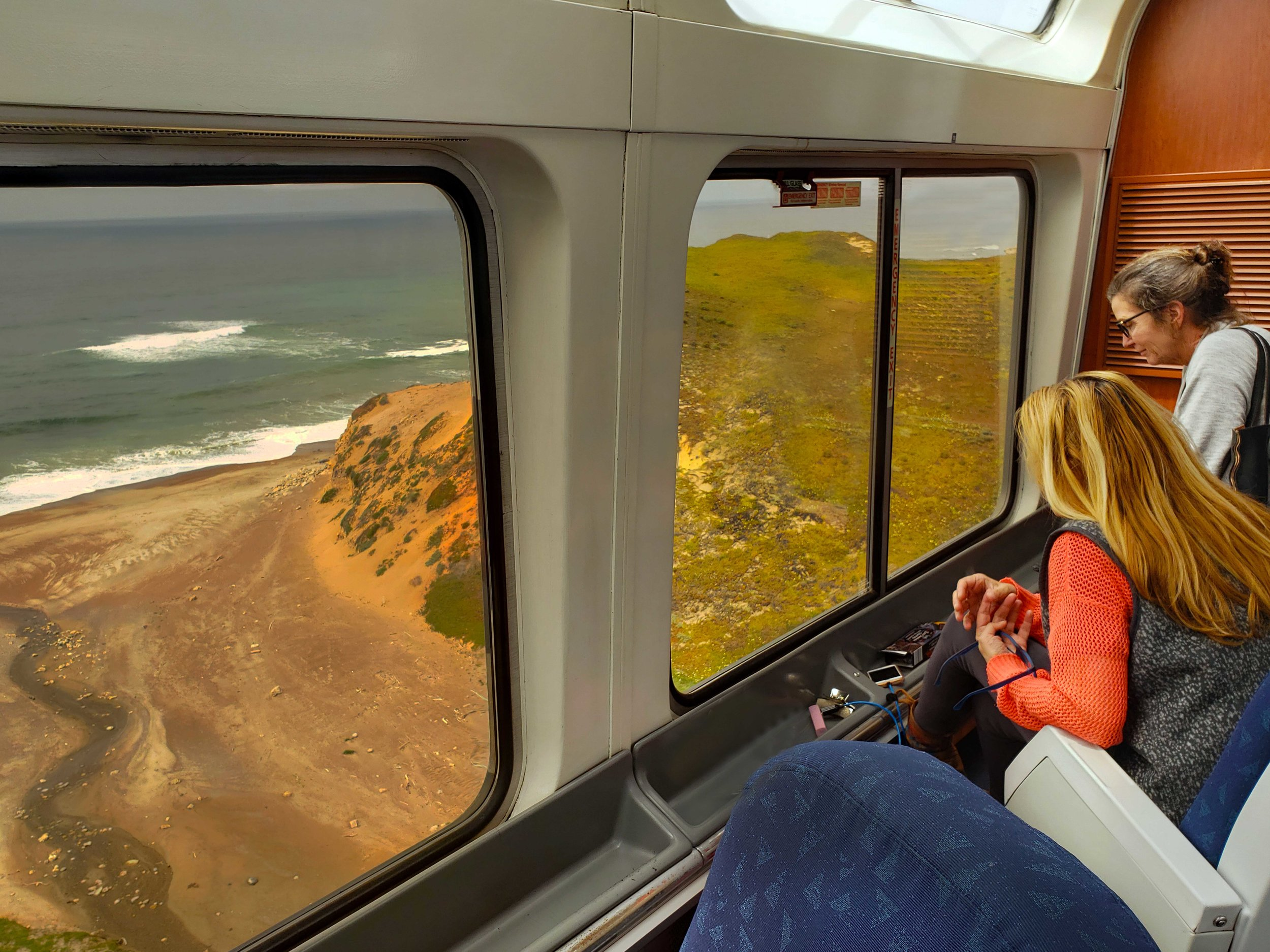 Taking in the SuperBloom along the California Coast in Amtrak's Pacific Surfliner © Joanne DiBona