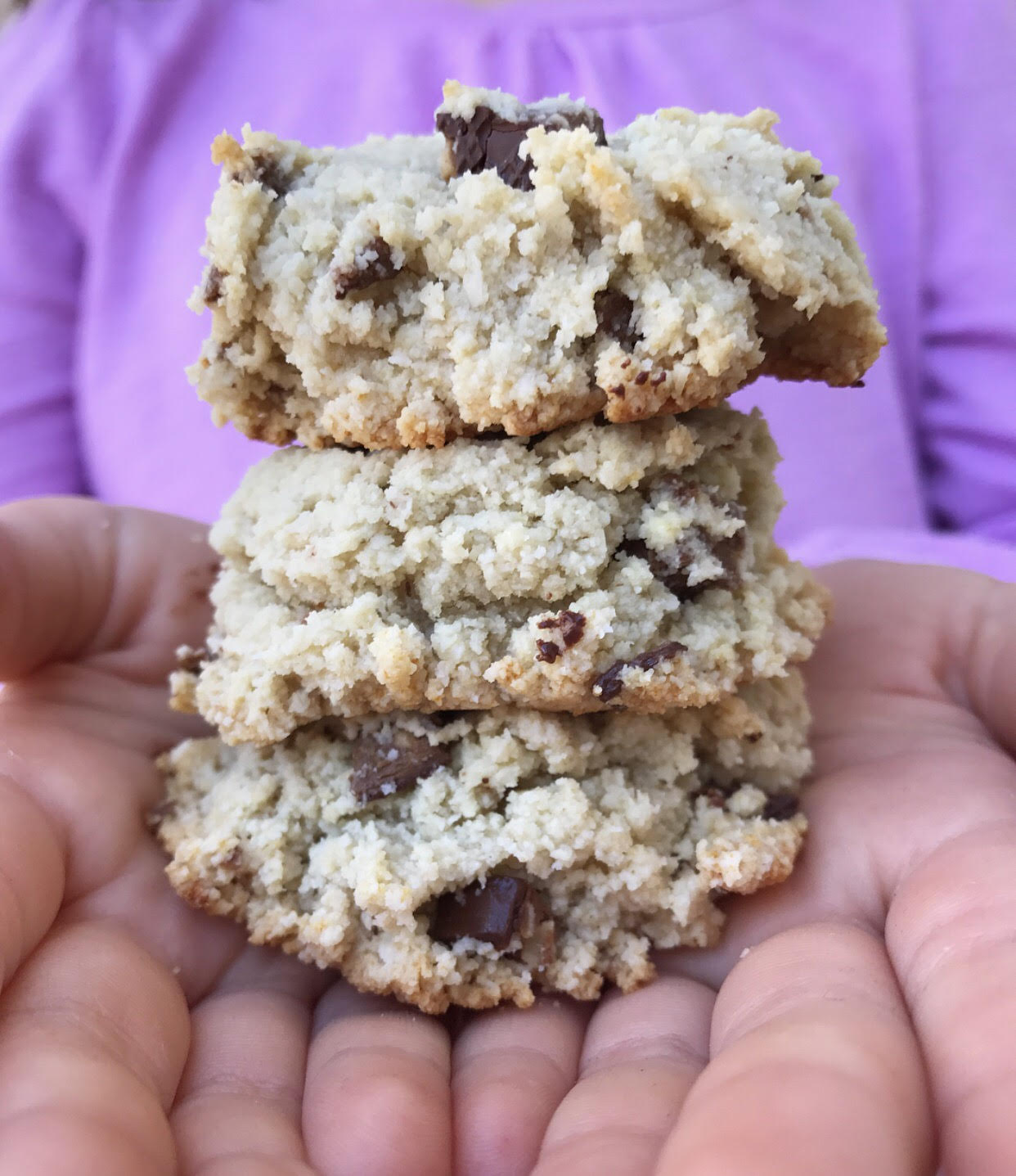 Protein Mint Chocolate Square Cookies