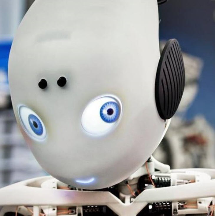 Roboy the Robot.  Source: Artificial Intelligence Laboratory of the University of Zurich