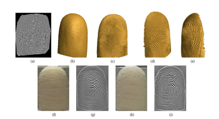 2D synthetic image to 3D fingerprint phantom. (a) A sample 2D synthetic fingerprint image generated using the method in [10]; (b) generic 3D finger surface; (c) the frontal view, (d) left profile view and (e) right profile view. Source: http://www.cse.msu.edu