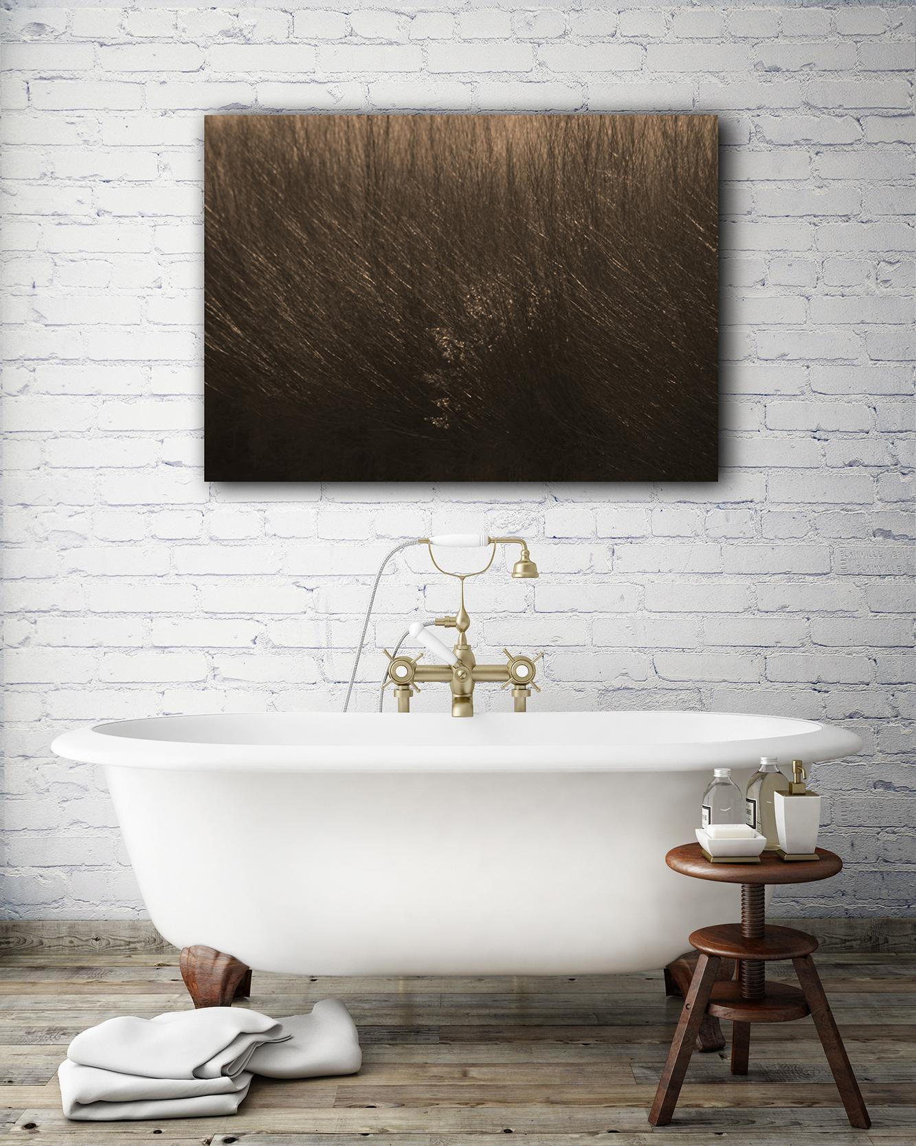 Darby Brush In Bath.jpg