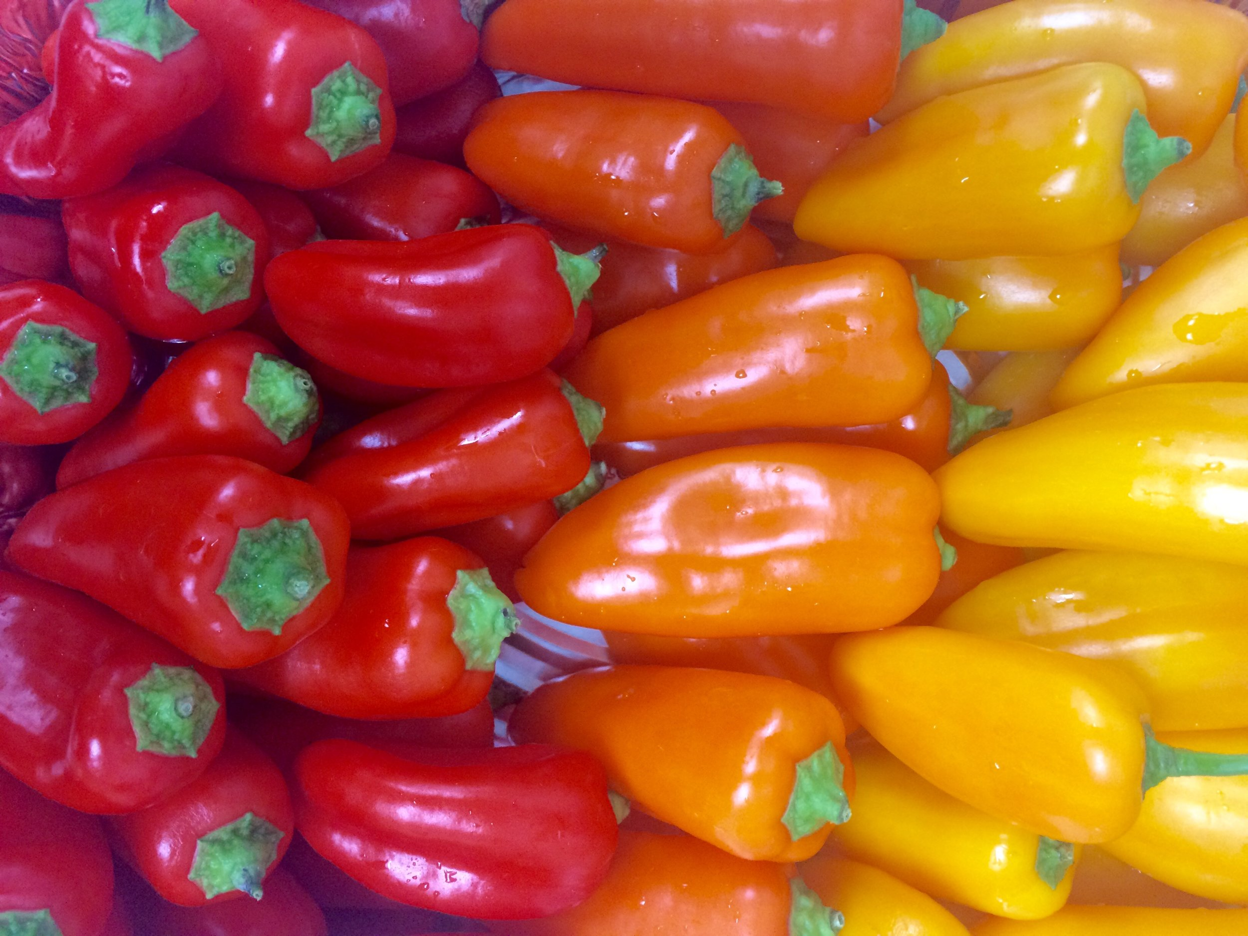 scenes from our healthy lunch - colorful mini peppers.