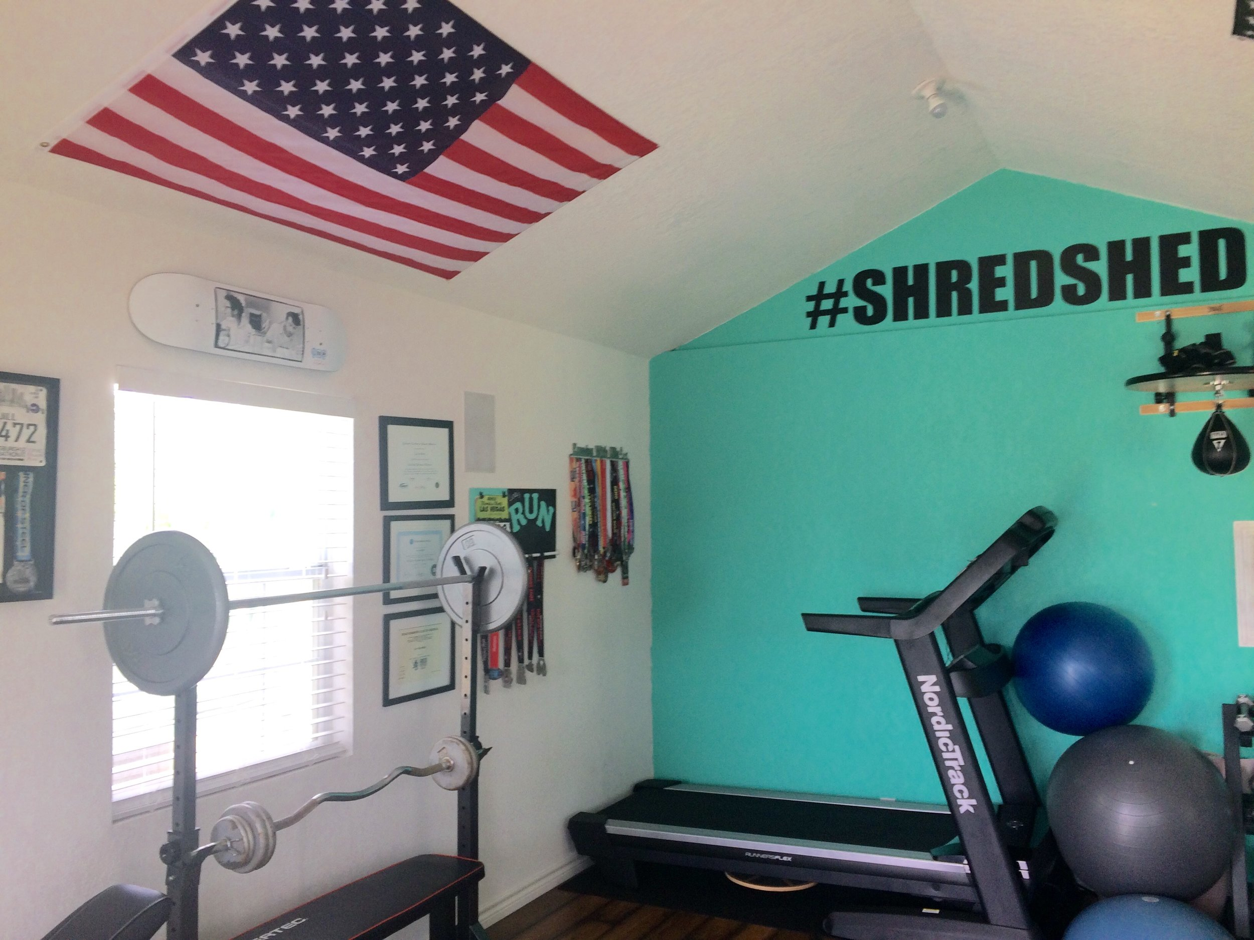 scenes from the  #Shredshed