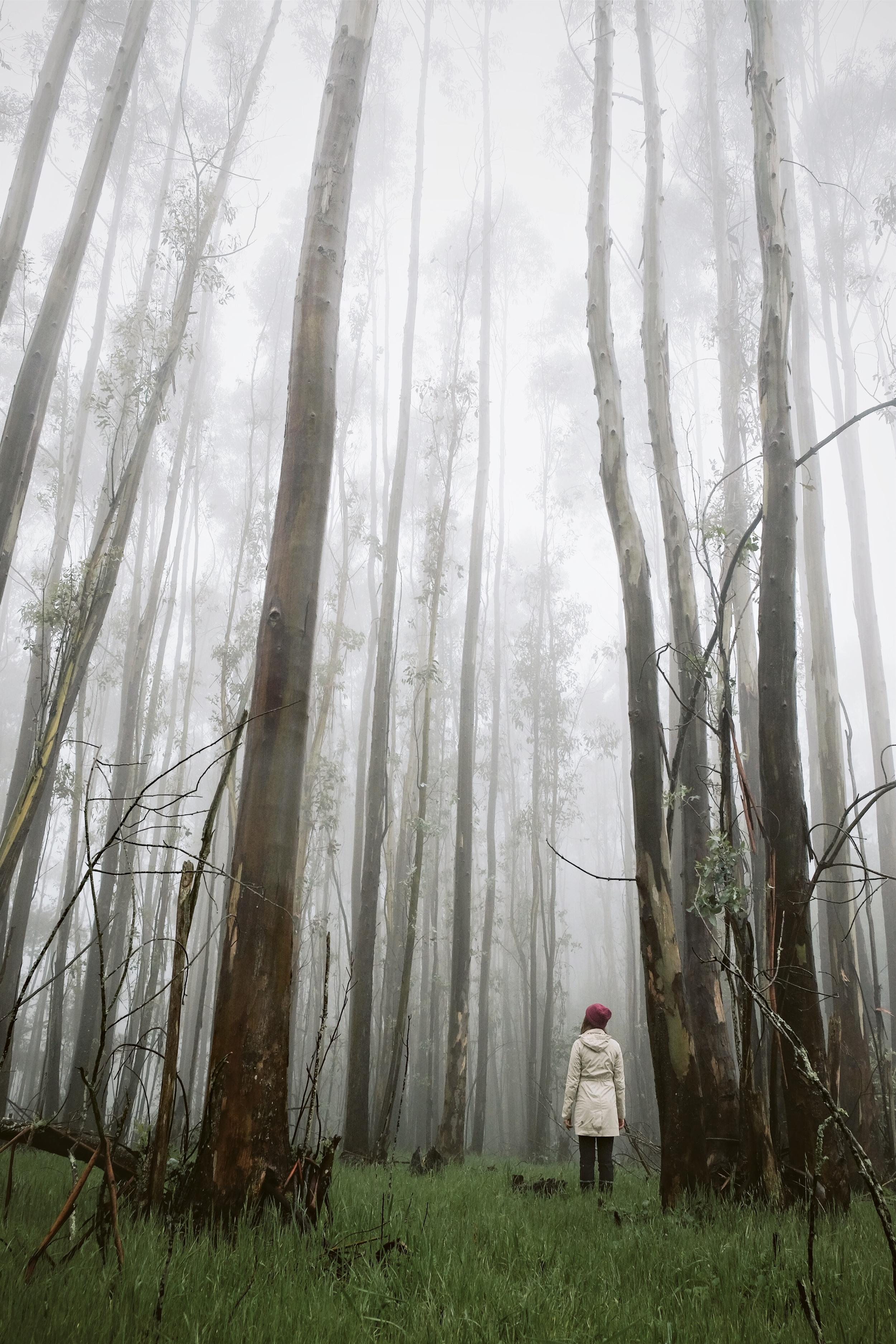 redwoodregional-vivianchen5sm.jpg