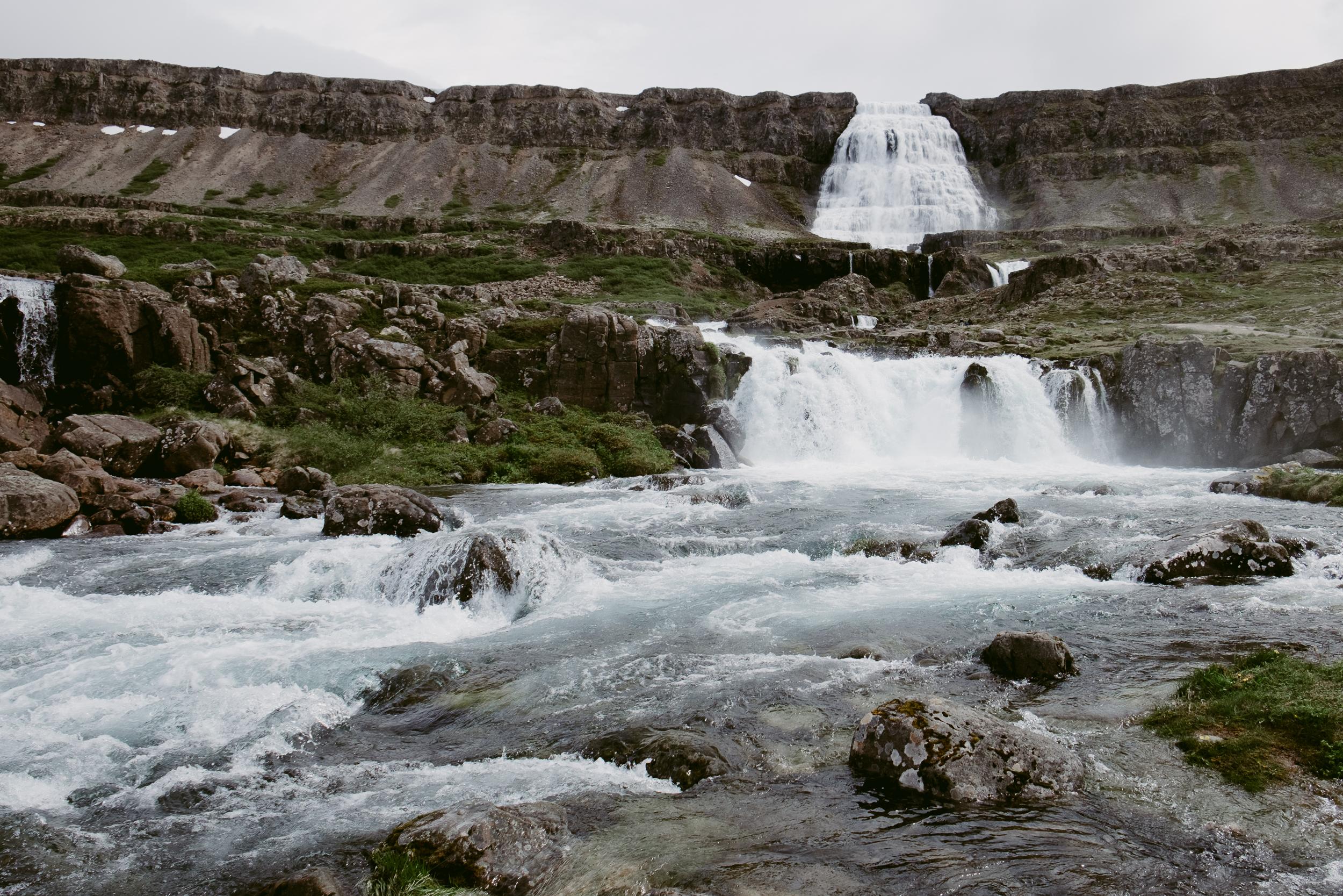 dyjandi-iceland-vivianchen-4523.jpg