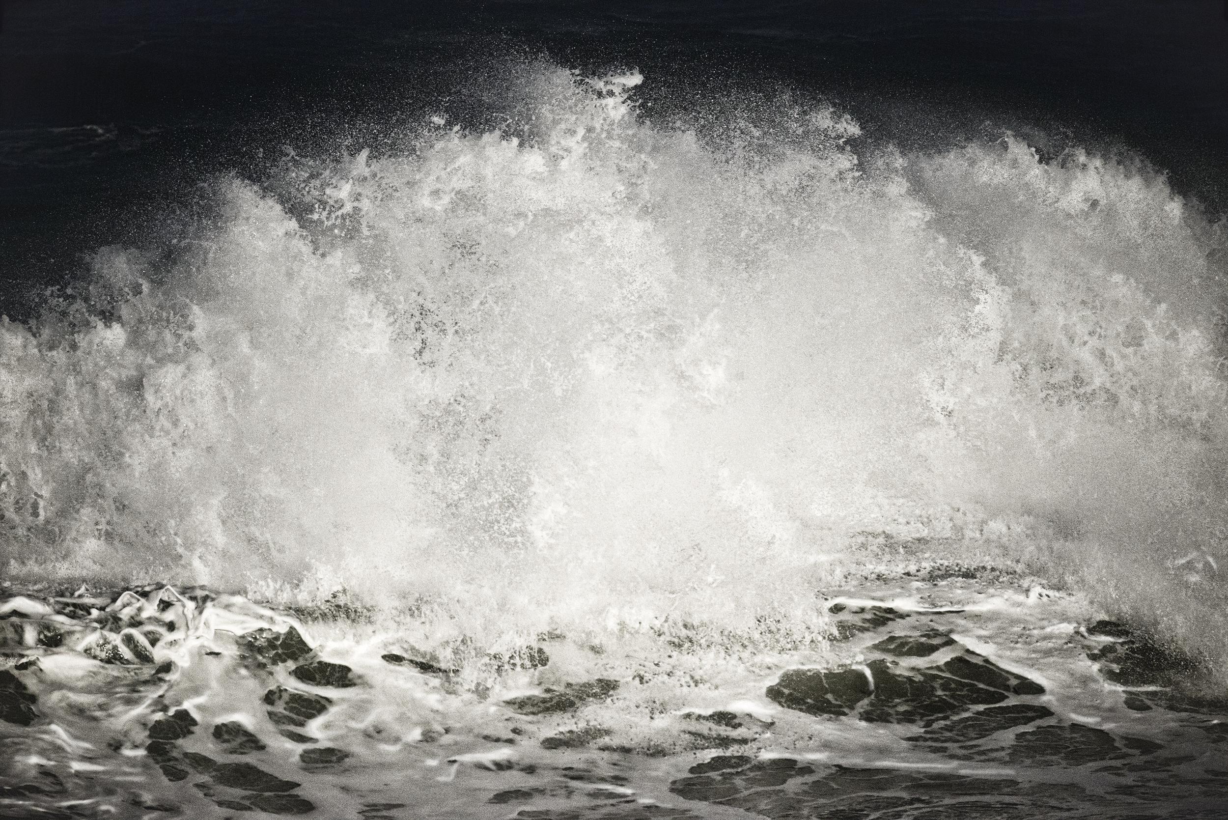 Art of the Ocean Series_website.jpg