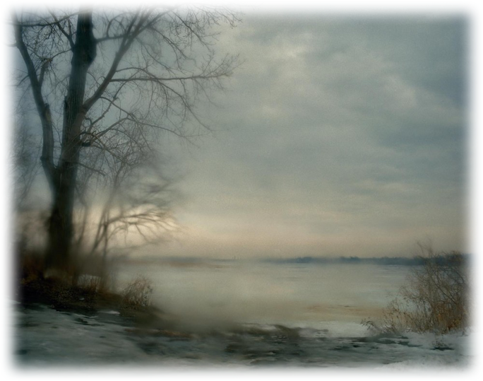 Todd Hido  |   Untitled #5368