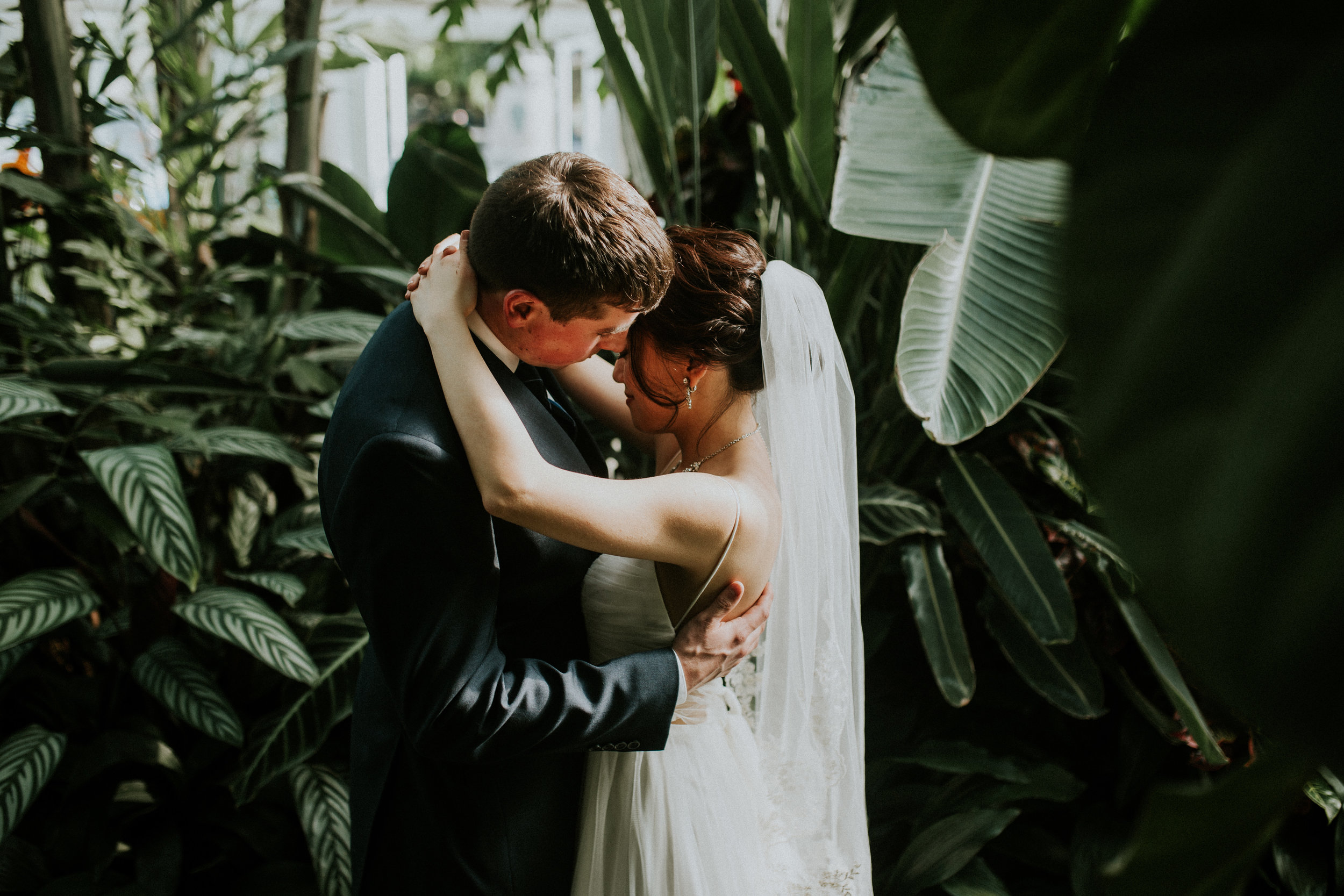 lisa & tom | volunteer park conservatory, seattle