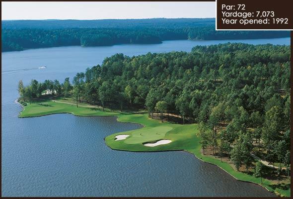 golfgreen (6).jpg