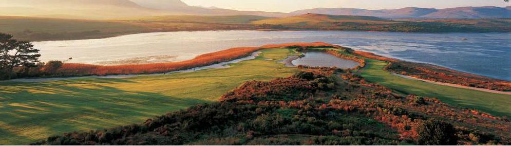 golfgreen (3).png