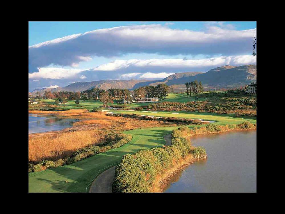 golfgreen (24).jpg