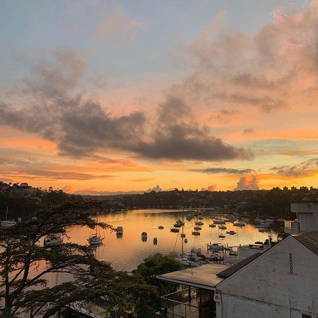 Sunrise in Cammeray 🌅