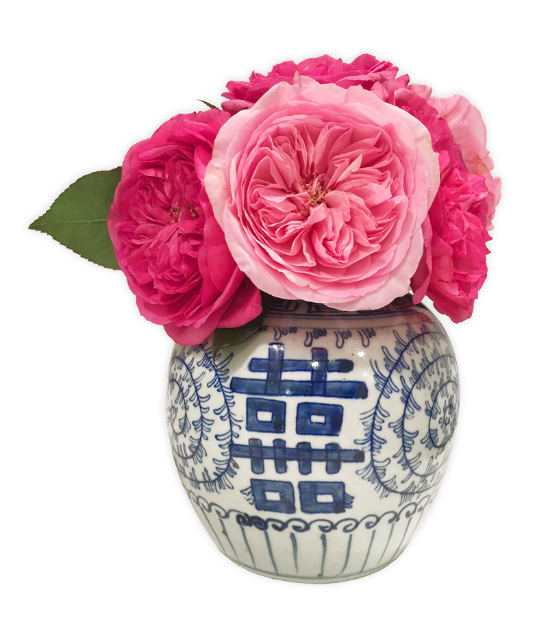 pink garden roses in a small Double Happiness jar