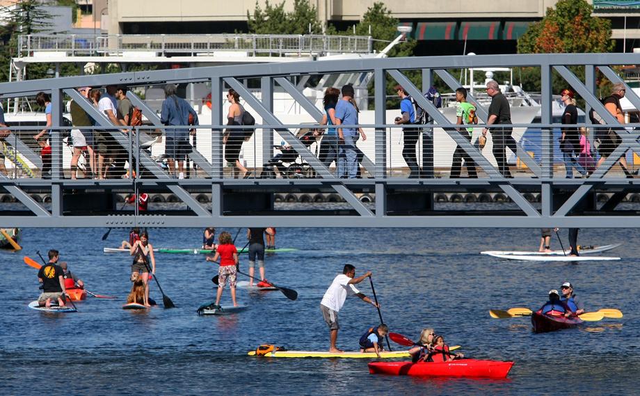 Lake Union Paddle Board Rental