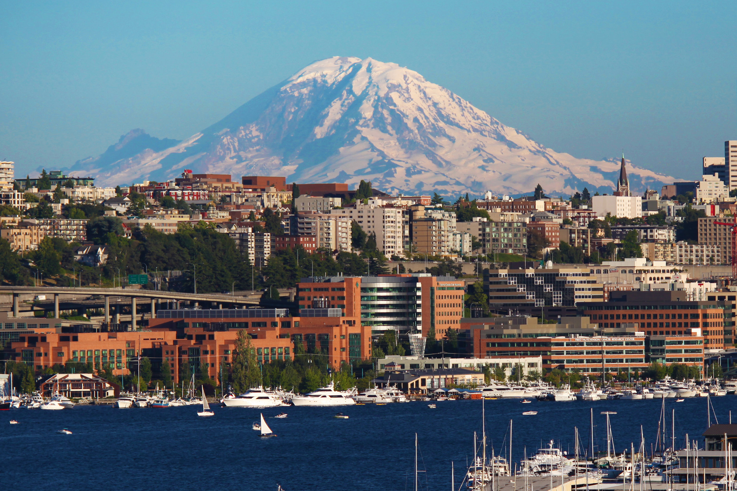 Seattle Paddle Board Rentals