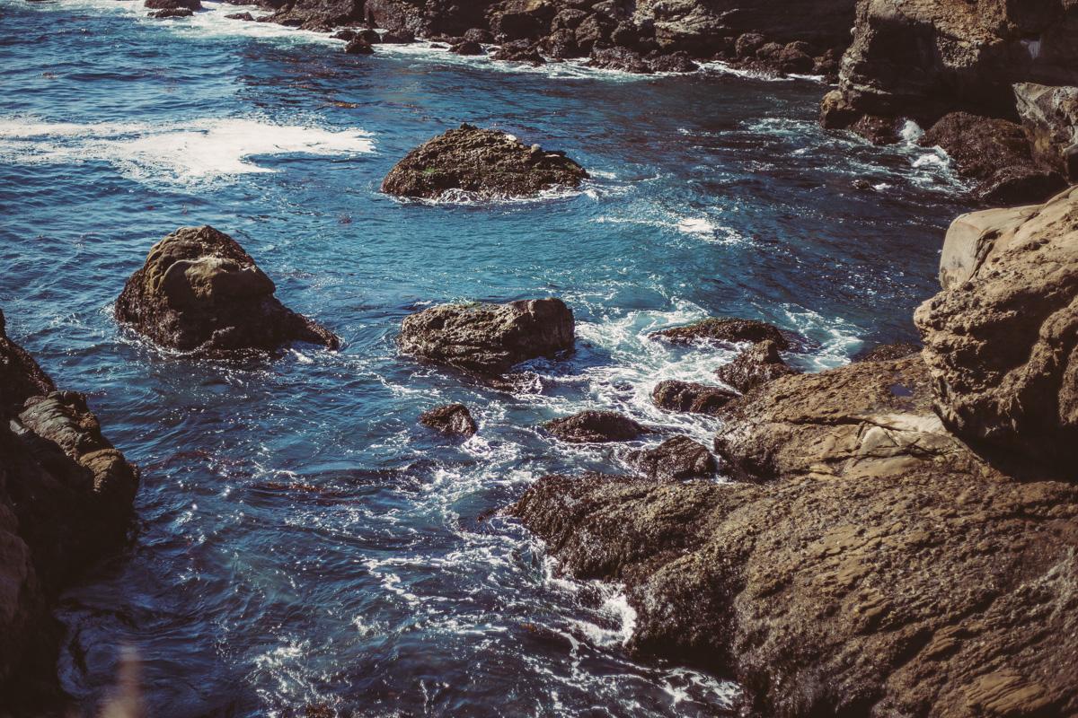 point-lobos-california-17.jpg