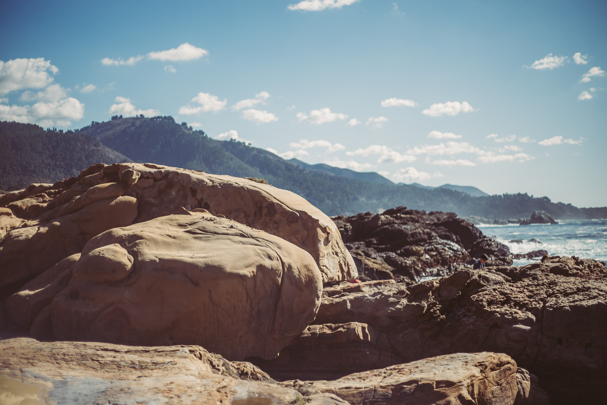point-lobos-california-11.jpg